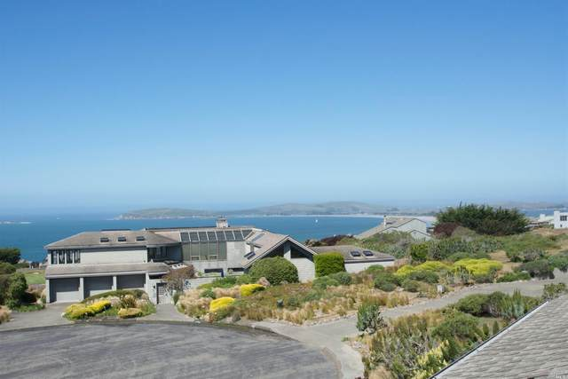 464 Loon Court, Bodega Bay, CA 94923 (#321034592) :: RE/MAX GOLD