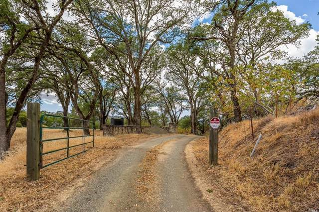 90 Grandview Road, Napa, CA 94558 (#321041864) :: Golden Gate Sotheby's International Realty
