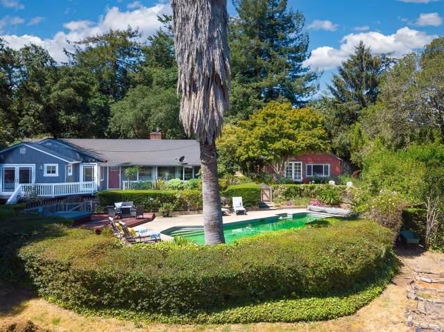 115 Fredricks Ranch Lane, Sebastopol, CA 95472 (#321051082) :: RE/MAX GOLD