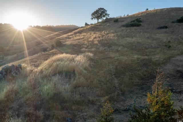 0 W Nicasio Road, San Geronimo, CA 96963 (#321053459) :: Lisa Perotti | Corcoran Global Living