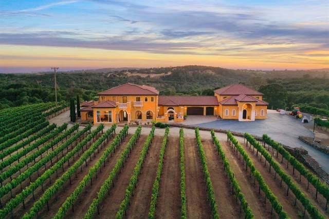 100 Shultz Vineyard Road, Shingle Springs, CA 95682 (#221076023) :: Golden Gate Sotheby's International Realty