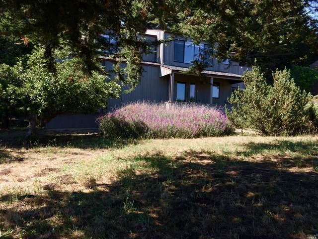 269 Bluff Reach, The Sea Ranch, CA 95497 (#321059357) :: Golden Gate Sotheby's International Realty