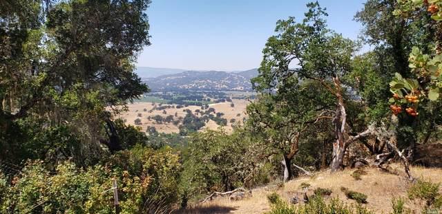 12921 Pine Avenue, Potter Valley, CA 95469 (#321060868) :: Golden Gate Sotheby's International Realty