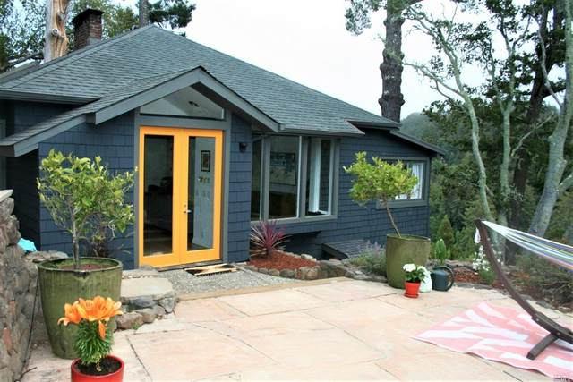 208 Lovell Avenue, Mill Valley, CA 94941 (#321069961) :: Intero Real Estate Services
