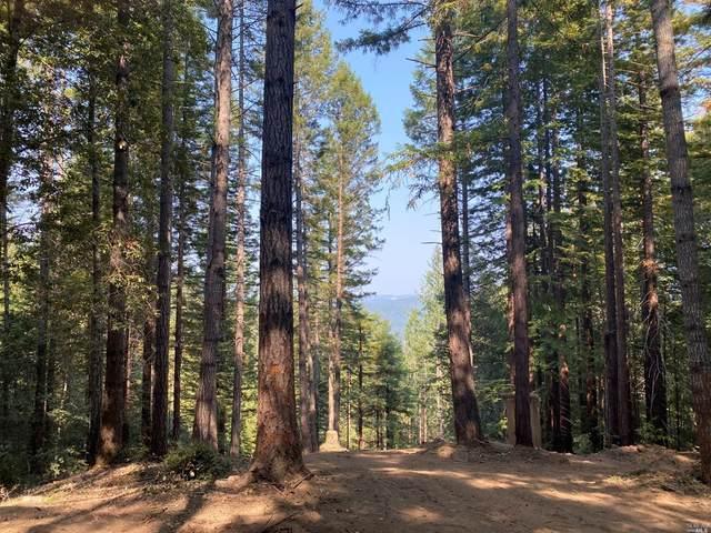 18350 Bald Hills Road, Navarro, CA 95463 (#321082386) :: RE/MAX Accord (DRE# 01491373)