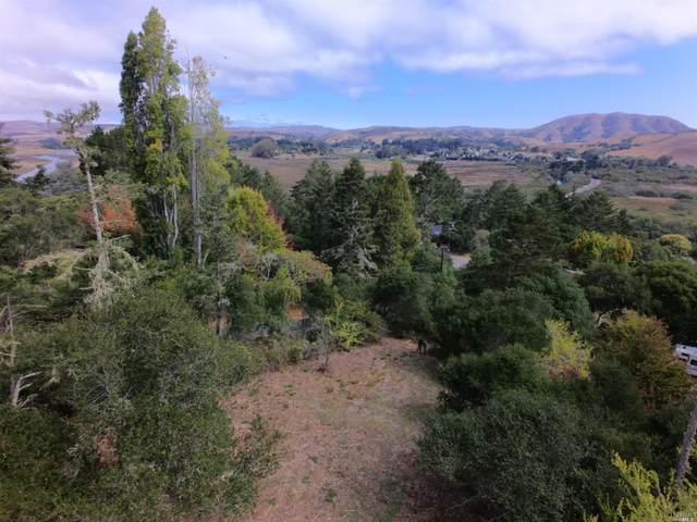 0 Silver Hills Road, Point Reyes Station, CA 94956 (#321088892) :: Golden Gate Sotheby's International Realty