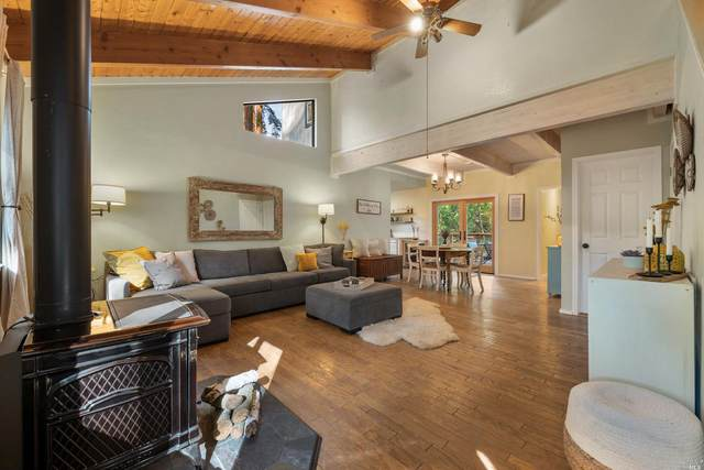 11001 Ogburn Lane, Forestville, CA 95436 (#321097418) :: Lisa Perotti | Corcoran Global Living