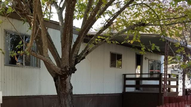 146 Vista Drive, Sonoma, CA 95476 (#21728426) :: Intero Real Estate Services
