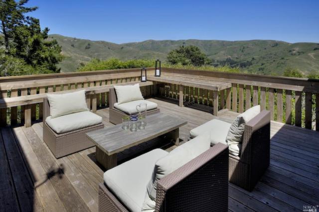 43 Starbuck Drive, Muir Beach, CA 94965 (#21812116) :: Rapisarda Real Estate