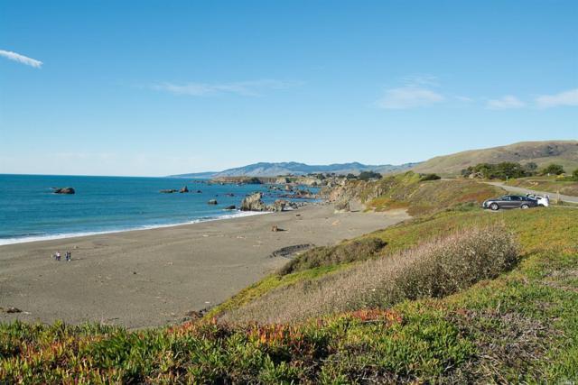 Bodega Bay, CA 94923 :: RE/MAX GOLD