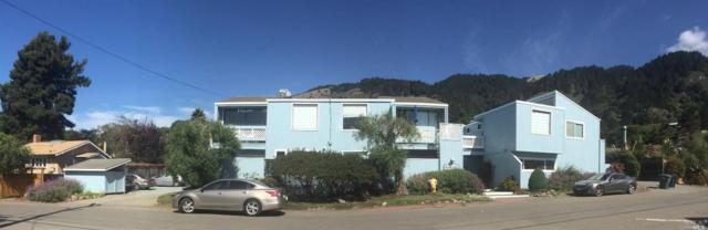 18 Arenal Avenue #3, Stinson Beach, CA 94970 (#21823048) :: Rapisarda Real Estate