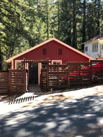 17247 Old Monte Rio Road, Guerneville, CA 95446 (#21823839) :: RE/MAX GOLD