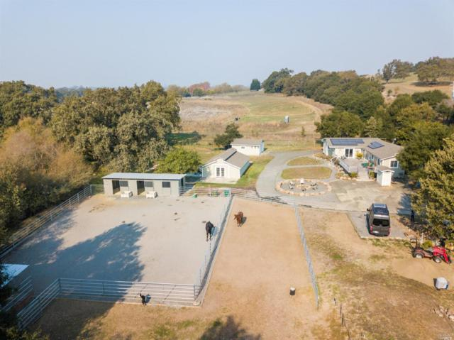 4991 Llano Road, Sebastopol, CA 95472 (#21829134) :: W Real Estate | Luxury Team