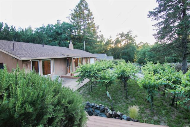 820 Warm Springs Road, Kenwood, CA 95452 (#21914682) :: RE/MAX GOLD