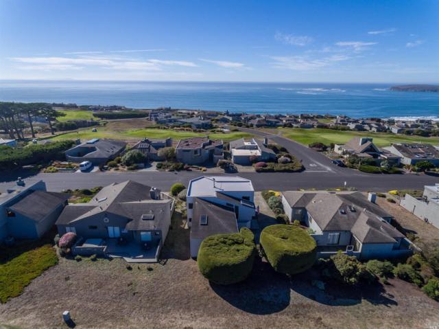 21002 Heron Drive, Bodega Bay, CA 94923 (#21914717) :: RE/MAX GOLD