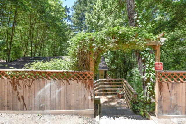 10987 Terrace Drive, Forestville, CA 95436 (#21916523) :: RE/MAX GOLD