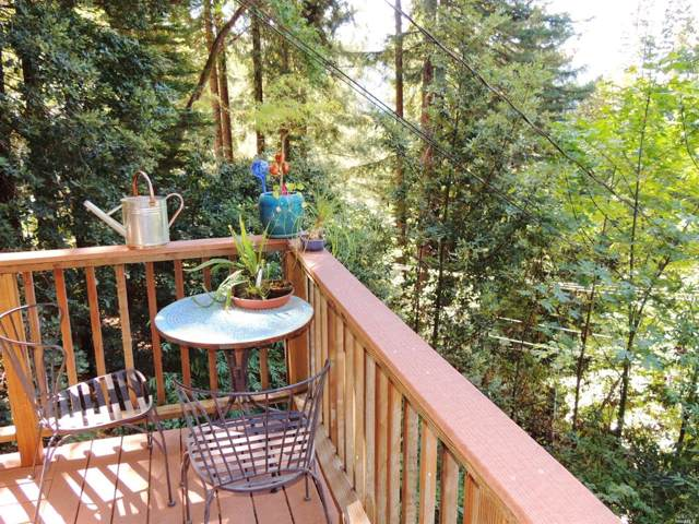 10985 Terrace Drive, Forestville, CA 95436 (#21924269) :: RE/MAX GOLD
