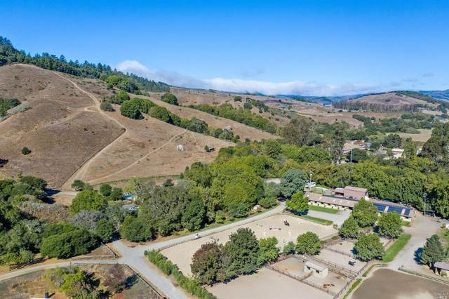 3421 Nicasio Valley Road, Nicasio, CA 94946 (#22021681) :: RE/MAX GOLD