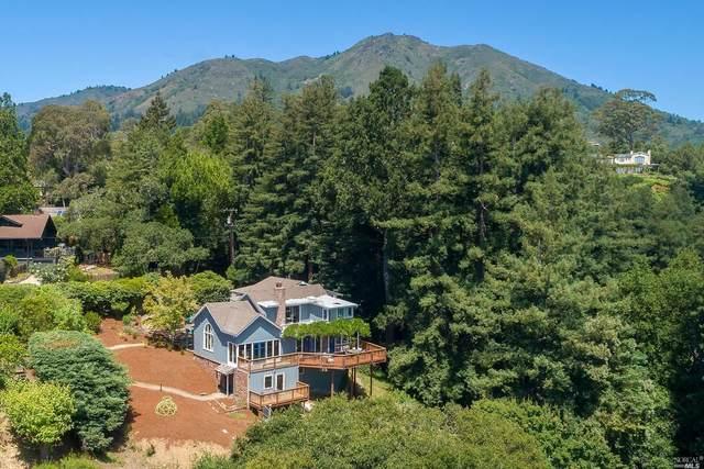 44 Ralston Avenue, Mill Valley, CA 94941 (#321001492) :: Lisa Perotti | Corcoran Global Living