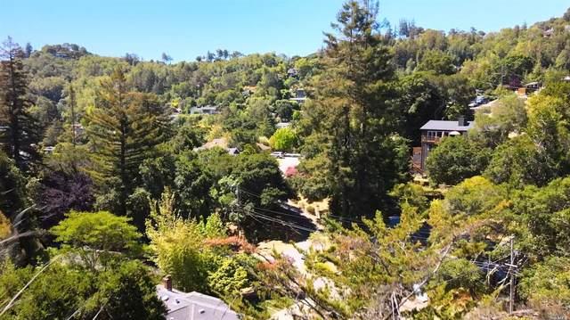 59 Knoll Road, San Rafael, CA 94901 (#321042744) :: Rapisarda Real Estate