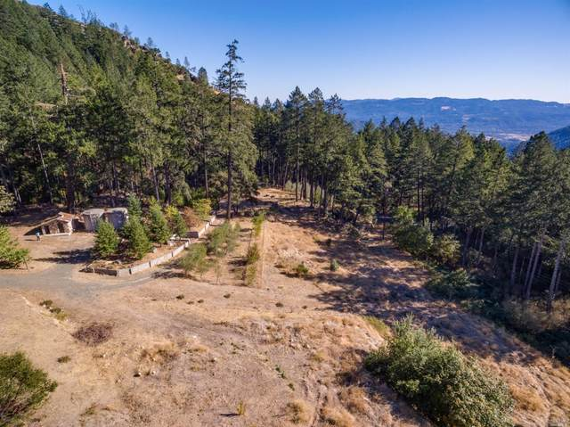 4410 Lake County Highway, Calistoga, CA 94515 (#321060838) :: Intero Real Estate Services