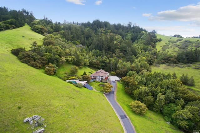 2100 Nicasio Valley Road, Nicasio, CA 94946 (#21822659) :: Intero Real Estate Services