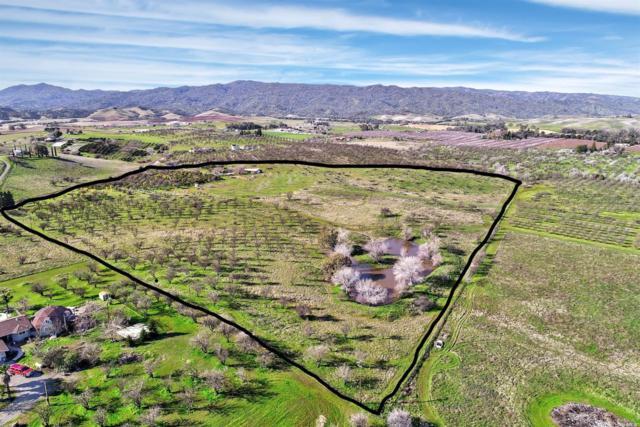 24780 County Road 22A Road, Esparto, CA 95627 (#21903202) :: Perisson Real Estate, Inc.