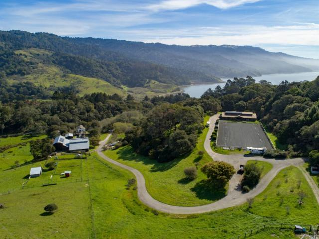 605 Horseshoe Hill Road, Bolinas, CA 94924 (#21905632) :: Lisa Imhoff | Coldwell Banker Kappel Gateway Realty