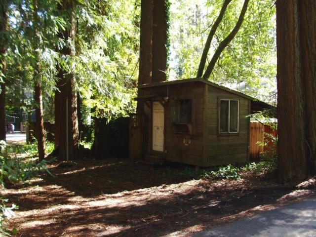 17406 Guerneville Highway, Guerneville, CA 95446 (#21906004) :: Rapisarda Real Estate