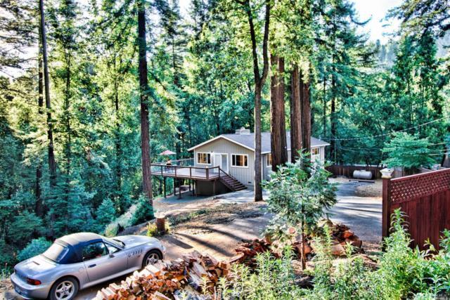 10620 Terrace Drive, Forestville, CA 95436 (#21914400) :: RE/MAX GOLD