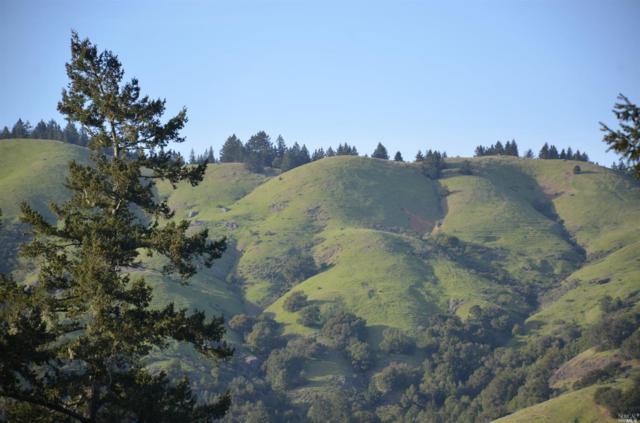 37 Conifer Way, Woodacre, CA 94973 (#21511733) :: Lisa Perotti | Zephyr Real Estate