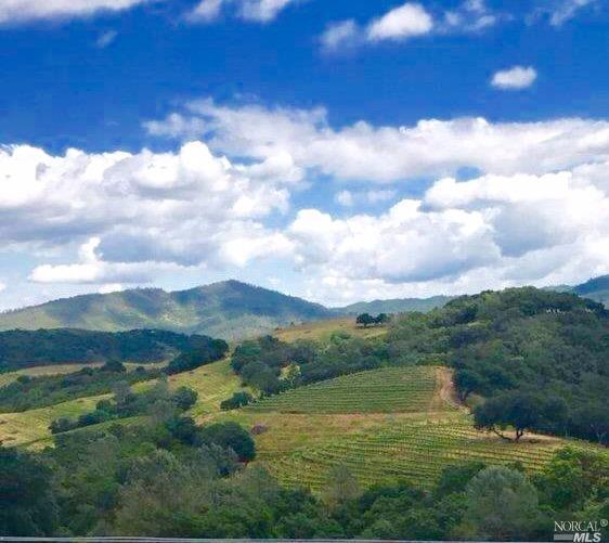 0-Lot 7 Reserve Road, St. Helena, CA 94574 (#21713815) :: Heritage Sotheby's International Realty