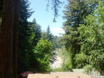 11717 Madrona Road, Forestville, CA 95436 (#21718251) :: RE/MAX PROs