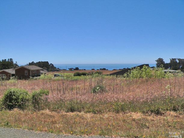 44290 O Rorey S Roost Drive, Irish Beach, CA 95459 (#21728401) :: Rapisarda Real Estate