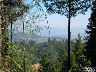 2400 Big Ridge Road, Healdsburg, CA 95448 (#21805896) :: RE/MAX GOLD