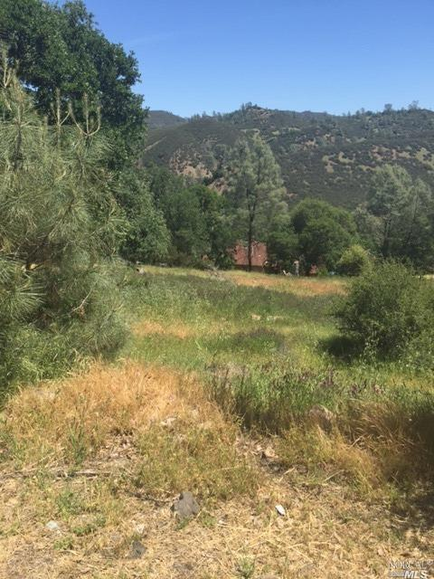 0 Harness Drive, Pope Valley, CA 94567 (#21821495) :: Intero Real Estate Services
