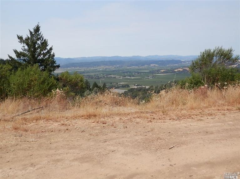 5145 Pine Flat Road - Photo 1