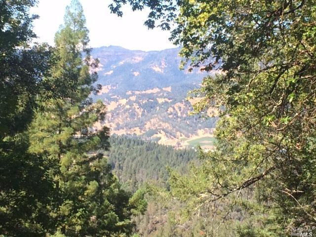 0 Diamond Mountain Road, Calistoga, CA 94515 (#21823644) :: Ben Kinney Real Estate Team