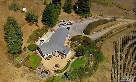 320 Bohemian Highway, Sebastopol, CA 95472 (#21826817) :: Perisson Real Estate, Inc.