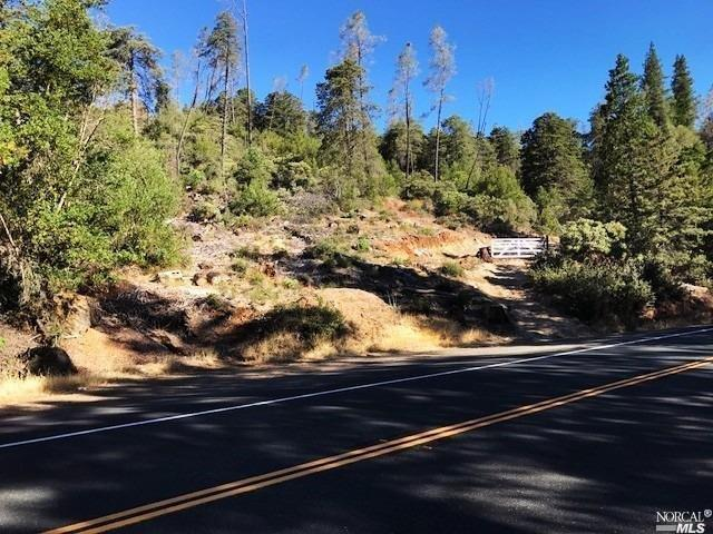 5655 Lake County Highway, Calistoga, CA 94515 (#21900753) :: Ben Kinney Real Estate Team