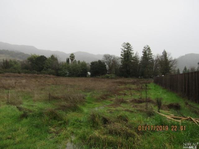 9101 Colony Drive, Redwood Valley, CA 95470 (#21901160) :: Perisson Real Estate, Inc.