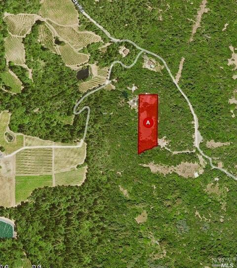 2201 Mount Veeder Road, Napa, CA 94558 (#21912279) :: W Real Estate   Luxury Team