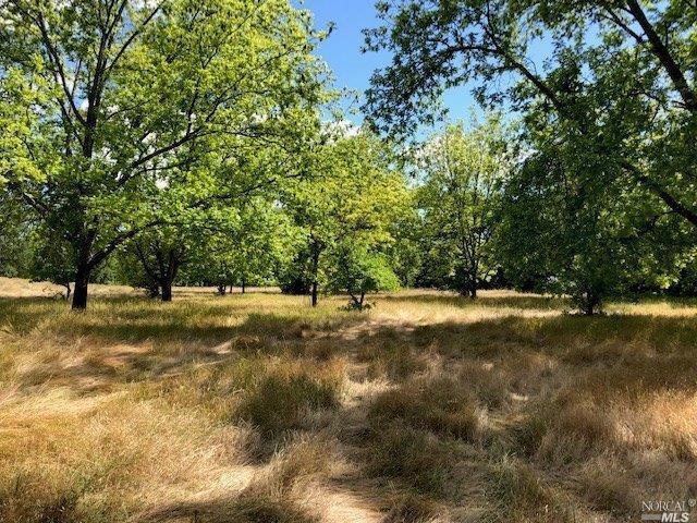 Vacaville, CA 95688 :: Rapisarda Real Estate