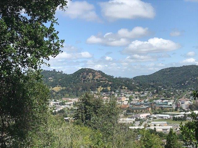 0 Bret Harte Road, San Rafael, CA 94901 (#21912609) :: RE/MAX GOLD