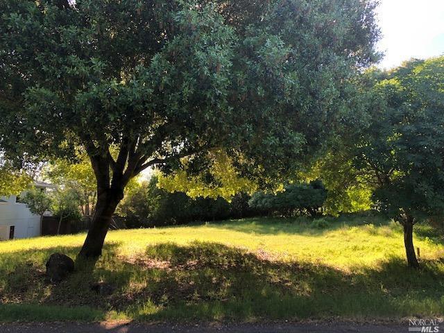 10377 Boren Bega Drive, Kelseyville, CA 95451 (#21913864) :: Lisa Perotti | Zephyr Real Estate