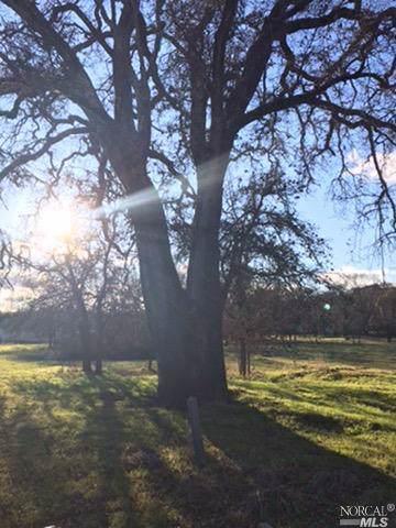 0 305 Park Way, Lakeport, CA 95453 (#22001011) :: RE/MAX GOLD