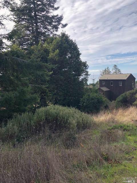 36090 Sea Ridge Road, The Sea Ranch, CA 95497 (#22001236) :: RE/MAX GOLD