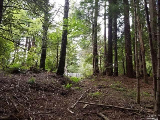 17500 Redwood Springs Drive, Fort Bragg, CA 95437 (#22002689) :: Rapisarda Real Estate