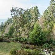 72 Compass Close Road, The Sea Ranch, CA 95497 (#22003298) :: Intero Real Estate Services
