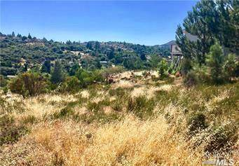 10137 Fairway Drive, Kelseyville, CA 95451 (#22007074) :: Intero Real Estate Services